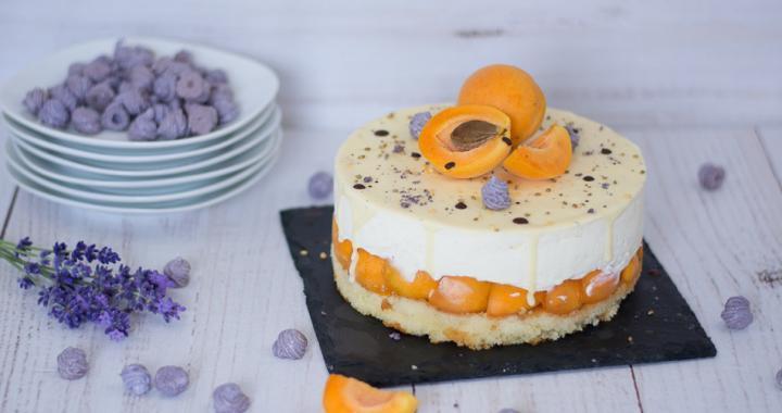 Aprikosen_Torte-6
