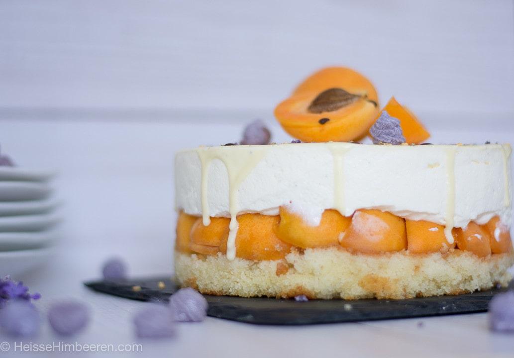 Aprikosen_Torte-7
