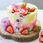 Frühlingstörtchen in einer Mascarponecreme mit frischen Erdbeeren