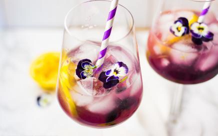 aperitif mit wodka